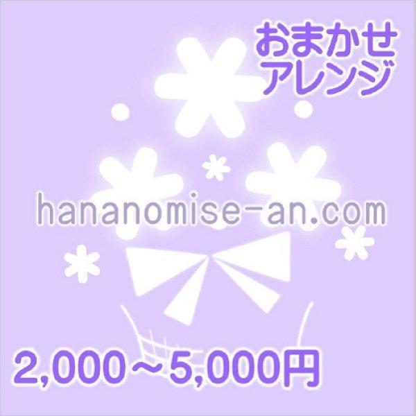 画像1: おまかせアレンジ☆カンタン注文 (1)