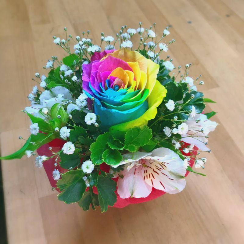 奇跡!虹色のバラ